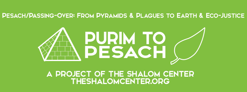 Purim to Passover The Shalom Center